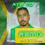 Quincy & DJ Buddha - Aye Yo Remix Ft. Shaggy & Patoranking